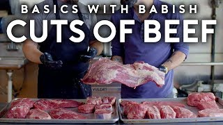 Every Cut of Beef! (Almost) | Basics with Babish