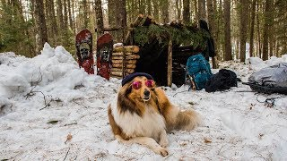 Overnight Camping at My Bushcraft Shelter in the Snow