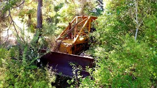 Caterpillar D2 Bulldozer broke down in a forest 13 years ago. Can we save it?