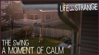 A Moment of Calm - The Swing