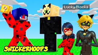 MINECRAFT BUT MIRACULOUS LADYBUG and CAT NOIR Do a Build Battle CHALLENGE | Snicker Hoops