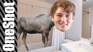 MOOSE IN THE BATH - IF TRENDING VIDEOS WERE HONEST