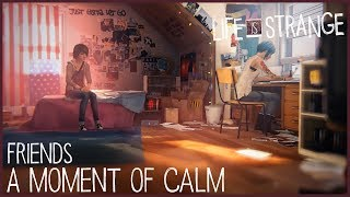 A Moment of Calm - Friends