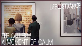A Moment of Calm - The Gallery