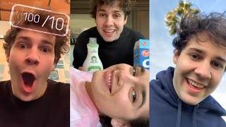DAVID DOBRIK BEST INSTAGRAM STORIES [PART 1]