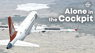Pilot Deliberately Crashes a Passenger Plane in Africa | Alone in the Cockpit