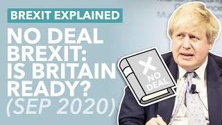 Is Britain Ready For No Deal? What Happens at the End of 2020 if There's No Deal? - TLDR News