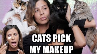 MY CATS PICK MY MAKEUP