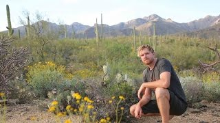 Solo Survival- How to Survive Alone in the Desert (Sonoran Desert)- Part One