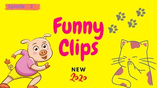 Funny Videos | Funny Clips 2020 | EPISODE 2