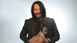 Keanu Reeves Plays With Puppies While Answering Fan Questions