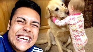 REACTING TO CUTE FUNNY DOG VIDEOS (TRY NOT TO SMILE)