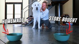 Testing STORE BOUGHT vs HOMEMADE Dog Soup! (Super Cooper Sunday #221)
